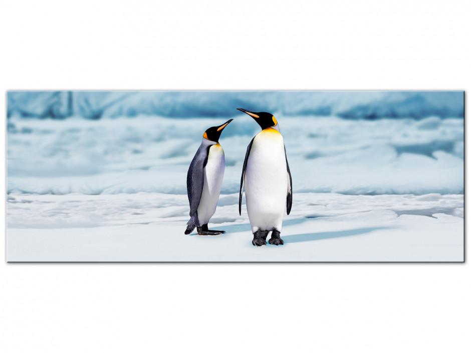 Tableau toile panorama PINGOUINS