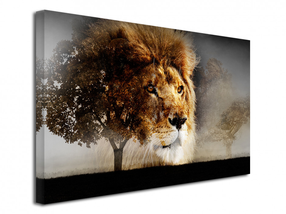 Tableau toile photo LA SPLENDEUR DU LION
