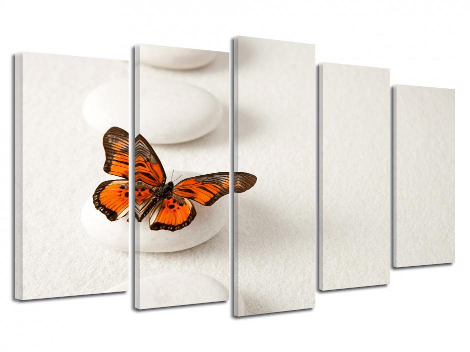 Tableau quintyque zen papillon