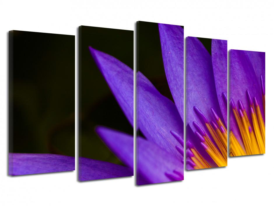 Tableau toile déco fleurs de lotus violette