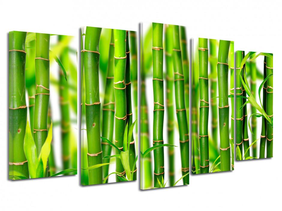Tableau décoratif foret de Bambou