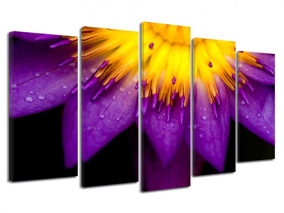 Tableau quintyque Fleurs de lotus