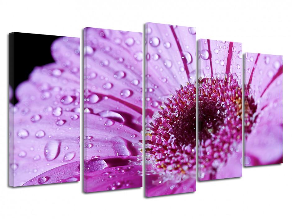 Tableau deco fleurs de Gerbera violette
