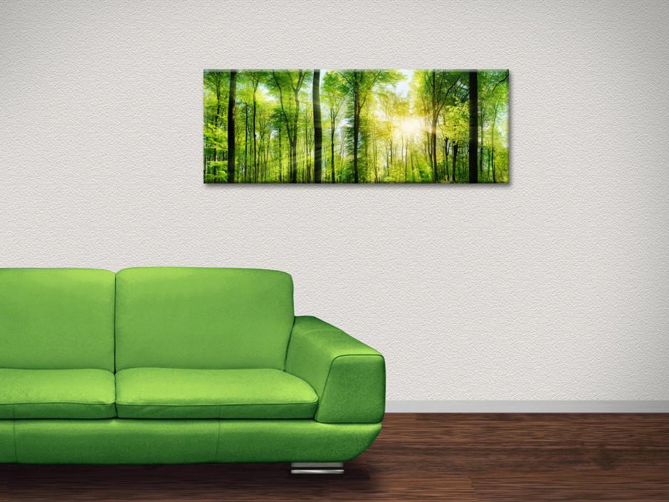Tableau toile photo de paysage NATURE VERDOYANTE