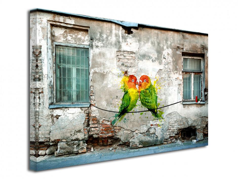 Tableau toile photo graffiti COUPLE OISEAUX