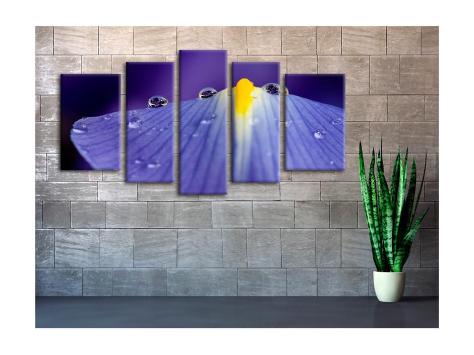 Tableau decoratif toile Macro goutte d'eau