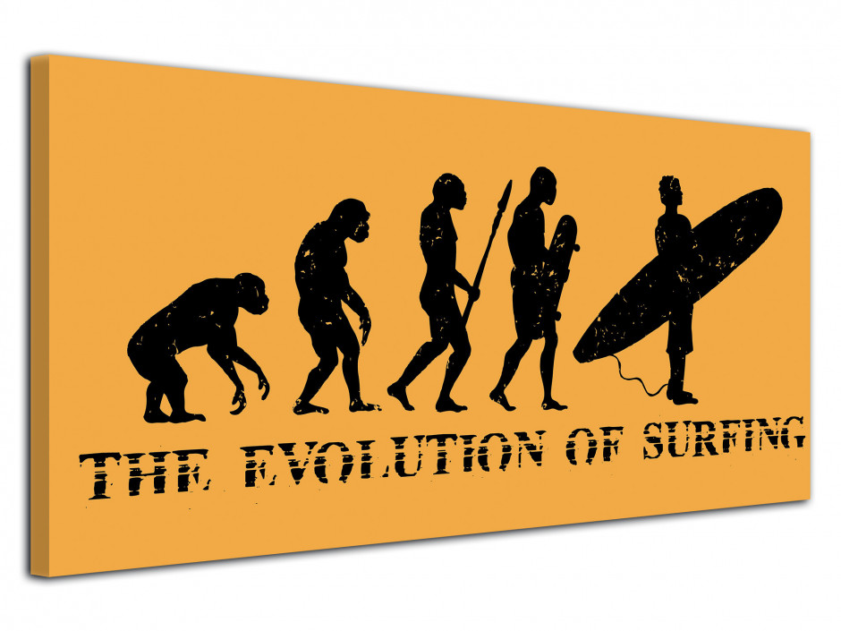 Tableau deco Evolution of Surfing